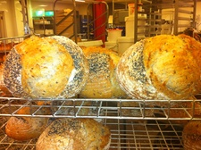 Simply Sourdoughs (HALF DAY)   *** NEW ***